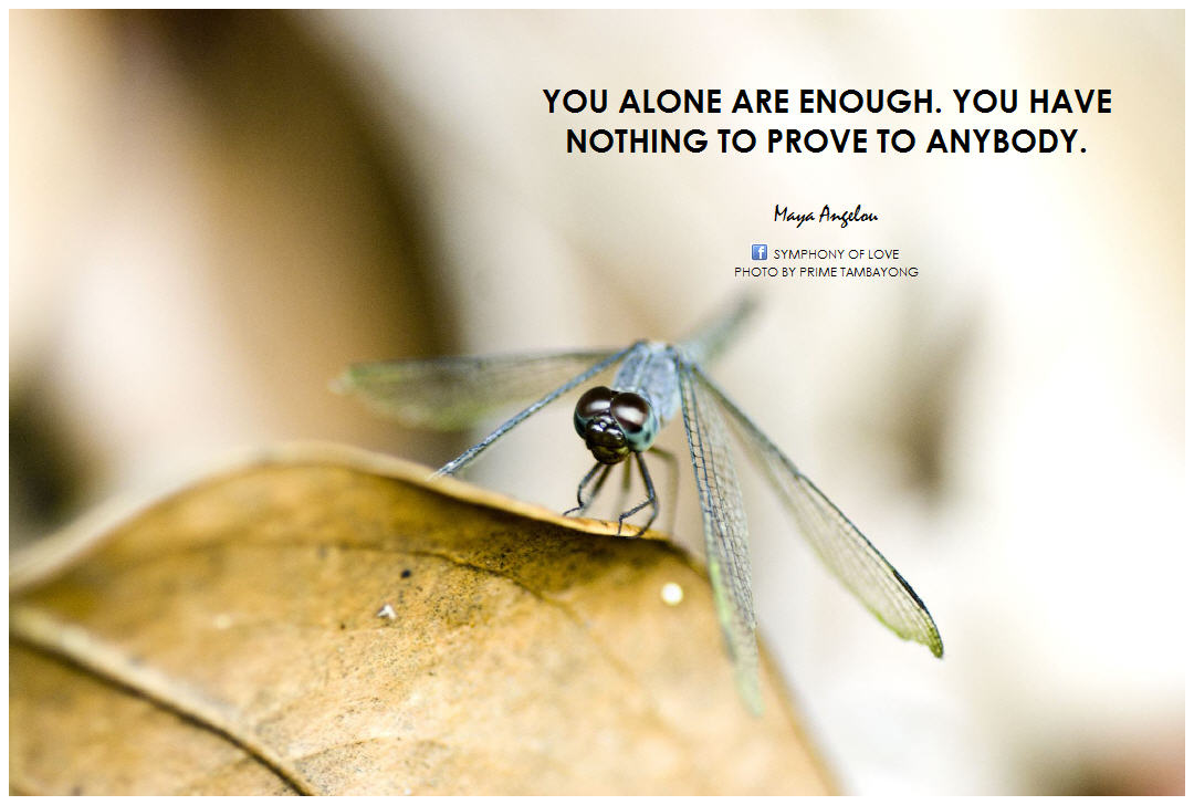 """You Have Nothing To Prove Quotes: """"You Alone Are Enough. You Have Nothing To Prove To"""